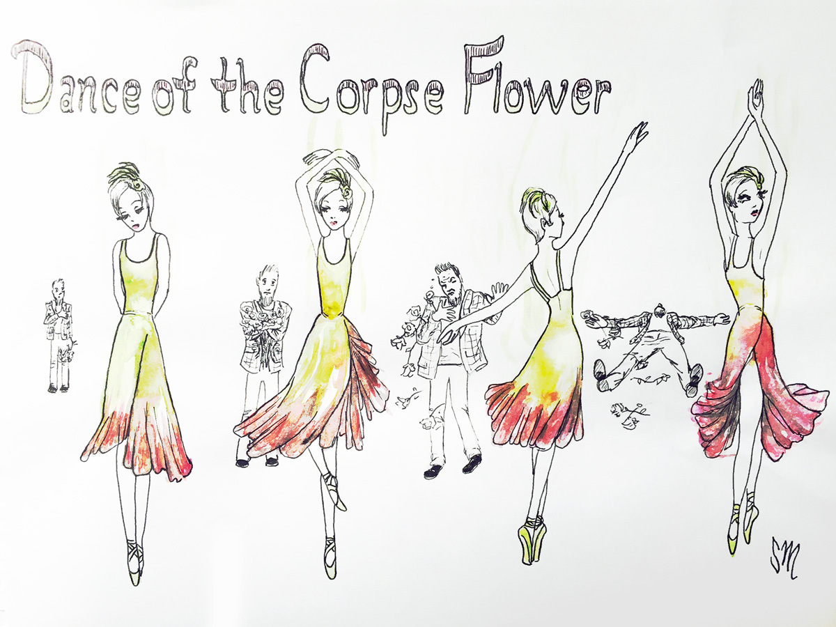 Dance of the Corpse Flower